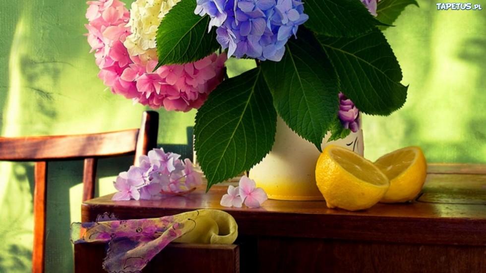 102220 kolorowy kwiatow bukiet cytryny Photo by Yulia Pletinka.